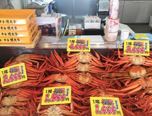Marine Dream Nou – Crab Market Alley